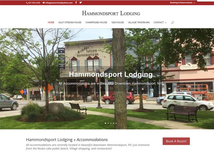 Hammandsport Lodging, Website Design
