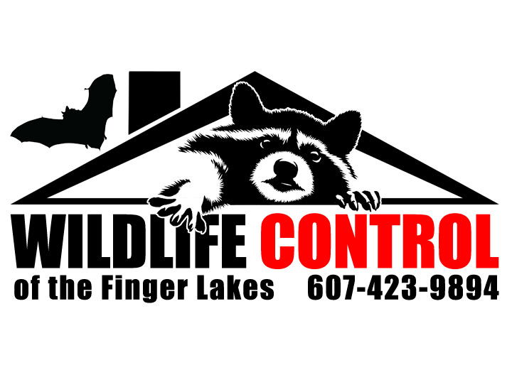 Wildlife Control of the Finger Lakes, Logo Design